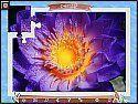 Бесплатная игра 1001 Пазл. Планета Земля 4 скриншот 6